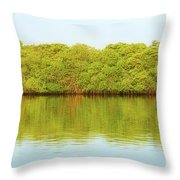 Lagoon On Santa Cruz Island In Galapagos Throw Pillow