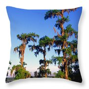 Lake Martin Cypress Swamp Throw Pillow