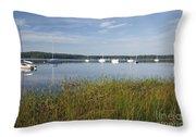 Lake Massabesic - Auburn New Hampshire Usa Throw Pillow