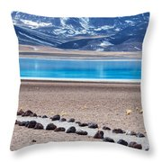Lake Miscanti In Chile Throw Pillow