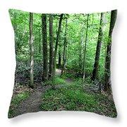 Lakeside Trail Winding Path - Yellowwood Lake Throw Pillow