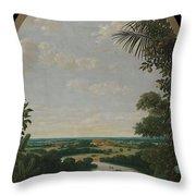 Landscape In Brazil Throw Pillow