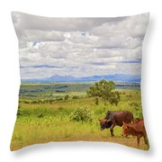 Landscape In Malawi Throw Pillow