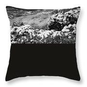 Landscape With Hydrangeas Throw Pillow