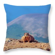 Landscape With Marmot Throw Pillow