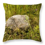Large Rock And Purple Asters Throw Pillow