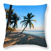 Last Sunbeams Throw Pillow