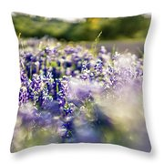 Lavender Purple Flower Blooming On Side Road In Texas At Sunset Throw Pillow