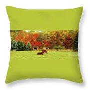 Lazy Autumn Day Throw Pillow