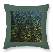 Leaf Of The Ivy   Throw Pillow