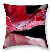 Leaf Study V Throw Pillow