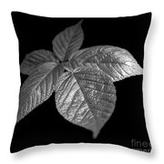 Leaves Throw Pillow by Tony Cordoza