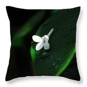 Left Behind Throw Pillow