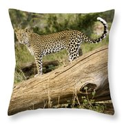 Leopard In The Forest Throw Pillow
