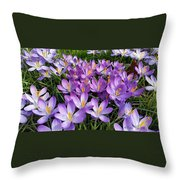 Let It Spring Throw Pillow