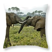 Let's Get Acquainted Throw Pillow