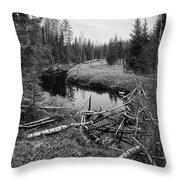 Liesijoki.  Seitseminen National Park Throw Pillow