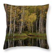 Liesilampi In September 3 Throw Pillow