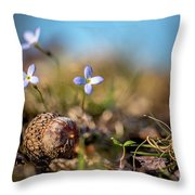 Life Delicate And Strong Throw Pillow