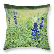 Lilac Flower In Green Canvas Spring Has Arrived 1 Throw Pillow