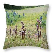 Lilac Flower In Green Canvas Spring Has Arrived 2 Throw Pillow