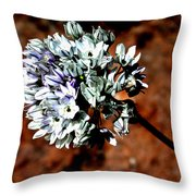 Lilly Of The Nile Throw Pillow