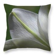 Lily Light Falls Throw Pillow