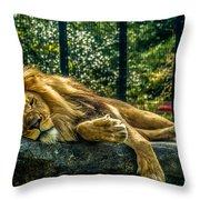 Lion Relaxing Throw Pillow