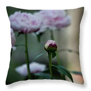 Little Ditty Throw Pillow