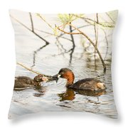 Little Grebe Tachybaptus Ruficollis Throw Pillow