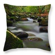 Little Pigeon River Throw Pillow
