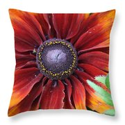Little Sunshine Throw Pillow