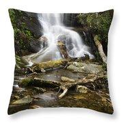 Log Hollow Falls North Carolina Throw Pillow