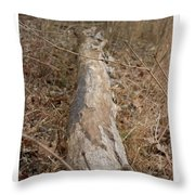 Log In The Woods Throw Pillow