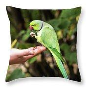 London Parakeet Throw Pillow