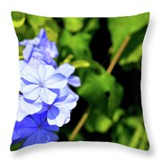 Lone Ant In A Big World Throw Pillow