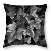 Lone Ranch Leaves 4930 Throw Pillow