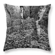 Lone Ranch Wood 4937 Throw Pillow