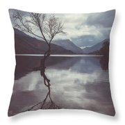 Lone Tree At Llyn Padarn Throw Pillow