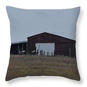 Lonesome Barn 2 Throw Pillow