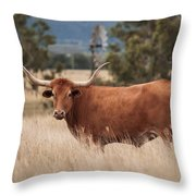 Longhorn Cow In The Paddock Throw Pillow