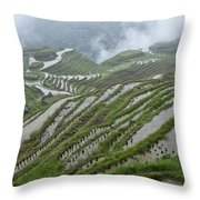 Longsheng Rice Terraces Throw Pillow