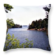 Looking Out Over The River Throw Pillow