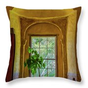 Looking Out The Window Throw Pillow