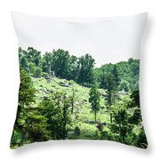 Looking Up At Little Round Top Throw Pillow