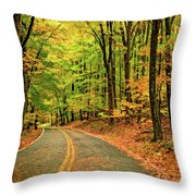 Lost In Pennsylvania - Paint Throw Pillow