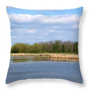 Lots Of Blue Throw Pillow