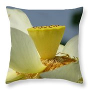 Lotus Throw Pillow