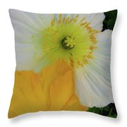Love In The Afternoon Throw Pillow