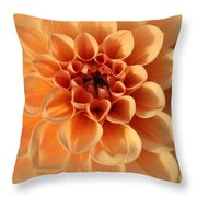 Lovely In Peaches And Cream - Dahlia Throw Pillow
